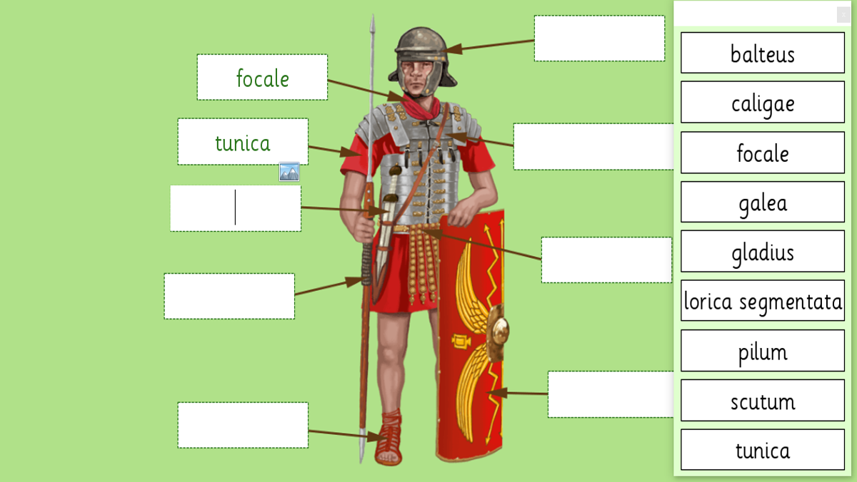 The Roman Guy – Italy tours in Rome, Vatican, Florence ...
